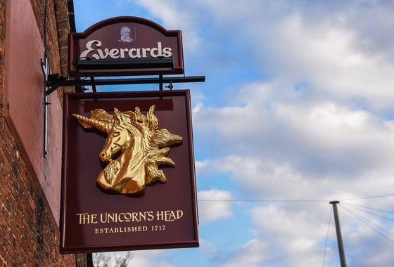 Unicorns Head